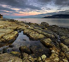 Derwent River Rockpool by Andrew Fuller