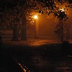 Foggy Night Rosiland Park by Lozzar Landscape