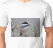 Chickadee scores Unisex T-Shirt