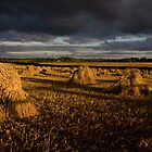 Stooks by Jennifer Bradford