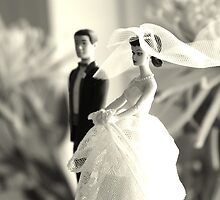 The Groom Stands Humbly in the Background by Rachel Sonnenschein