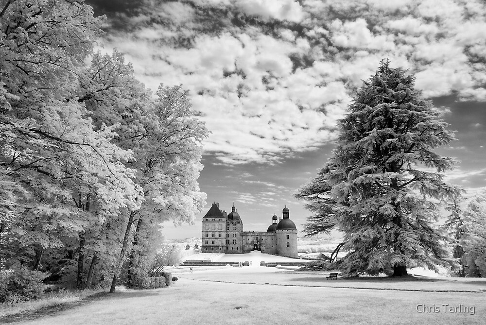Chateau du Hautefort Infrared V by Chris Tarling