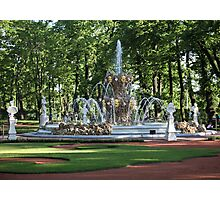 Fountain in the summer garden of St. Petersburg Photographic Print