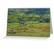 Camera shy sheep in Rosedale Greeting Card