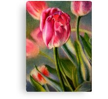 Spring Breeze - Watercolor Painting of Pink Tulips Canvas Print
