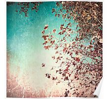 Pink autumn leafs on blue textured background Poster