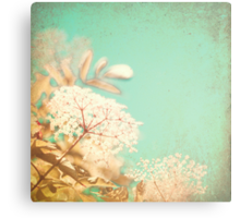 White little flowers on blue textured sky  Canvas Print