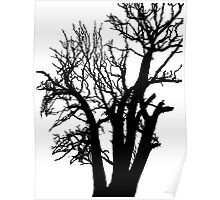 silhouette of the tree Poster