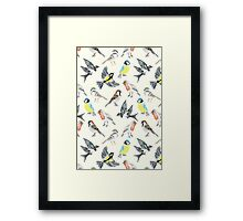 Illustrated Birds Framed Print