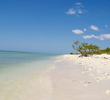 The beach by KitKatGibbs
