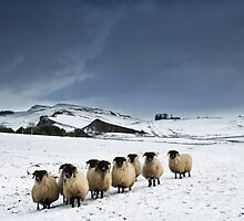 Winter on Hadrian's Wall - c12 by Joan Thirlaway