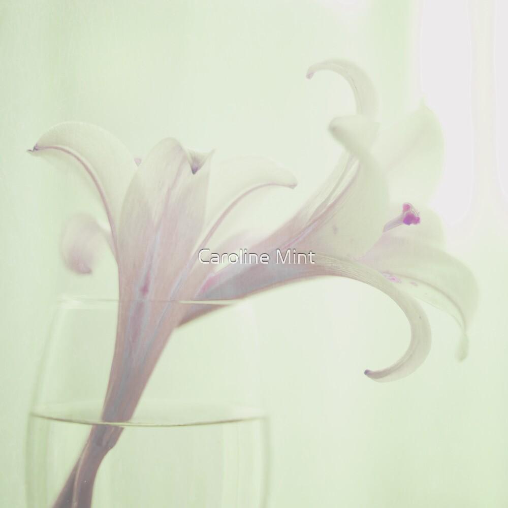Vintage Pink Flower by Caroline Mint