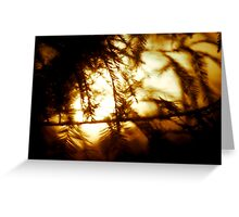 Through the Trees does Burn my Love  Greeting Card