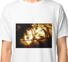 Through the Trees does Burn my Love  Classic T-Shirt