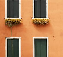 Orange Venetian Building and Green Windows by BrookeRyanPhoto