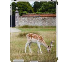 Male Deer Grazing iPad Case/Skin