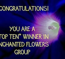 Banner - Enchanted Flowers Top Ten Winner by aprilann