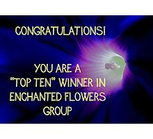 Banner - Enchanted Flowers Top Ten Winner Photographic Print