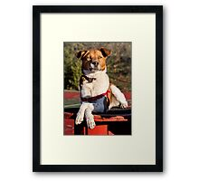 I've had enough of all your BS. Framed Print