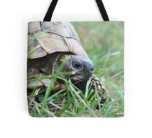 turtle in the grass Tote Bag