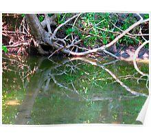 Mirrored creek Poster