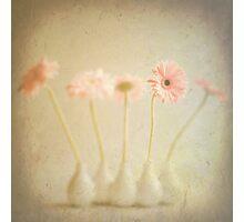 Vintage Pink Flowers Photographic Print