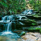 Beautiful Leura Cascades  by Chris  Randall