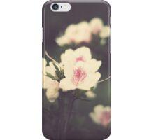 Vintage Pink Flowers iPhone Case/Skin