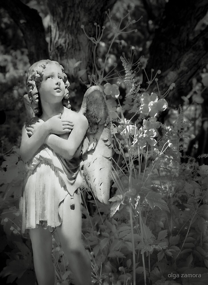 Garden Angel by olga zamora