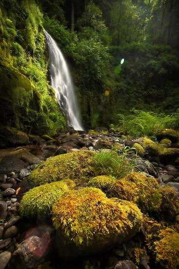 A Spoken Prayer, a Whispered Dream, and the Silent Glimmer In Between by Tula Top