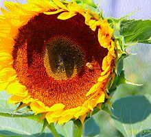 Bee One With Sunflower by Paul Ewing