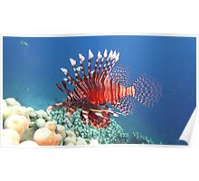 Lion Fish - So Painful Poster