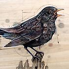 Blackbird by Fay Helfer