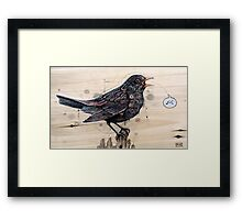 Blackbird Framed Print