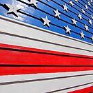 USA USA USA by Pippa Carvell