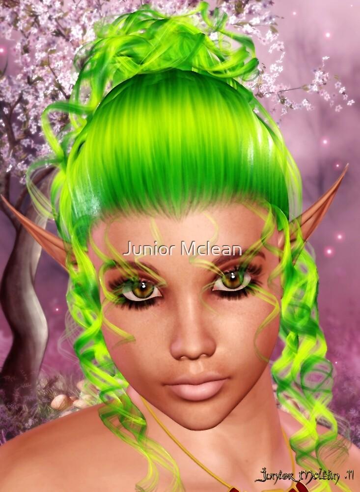 Enchanted Fantasy II by Junior Mclean