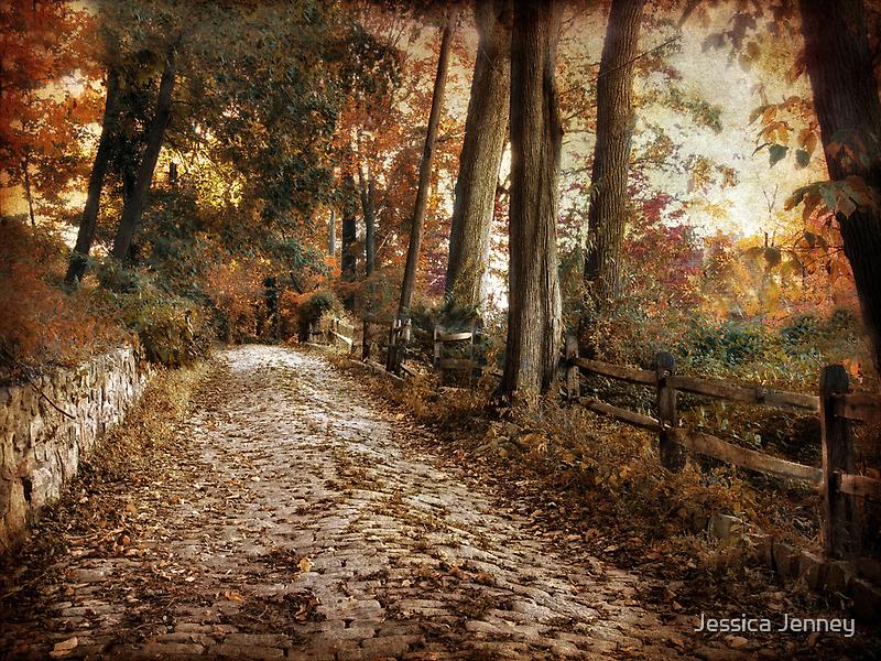 Autumn Ascending by Jessica Jenney