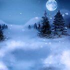 Winter's Night by pixelman