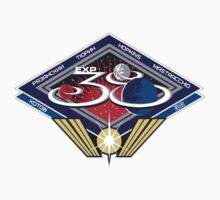 Expedition 38 Mission Patch by Spacestuffplus