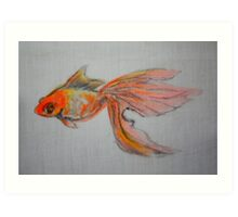 Goldfish Pond ( close up #9) Art Print