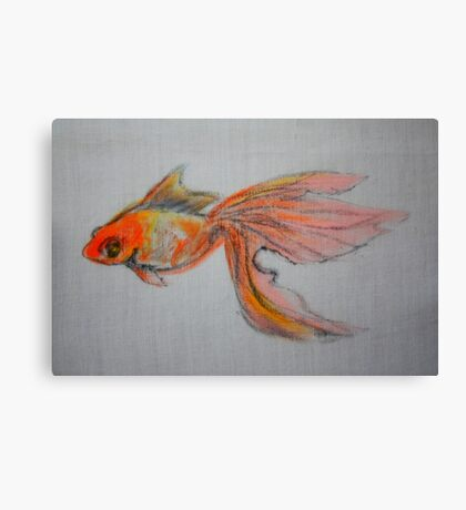 Goldfish Pond ( close up #9) Canvas Print