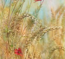 late summer by Teresa Pople
