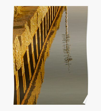 Reflections in the water Poster