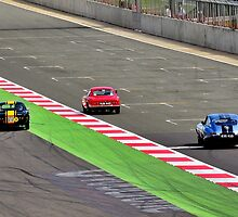 RAC Tourist Trophy for Historic Cars by Willie Jackson
