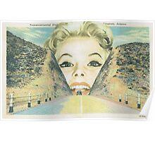 Vintage postcard collage Poster