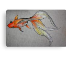 Goldfish Pond (close up #6) Metal Print