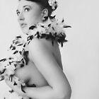 Feathers by Jennifer Hodney