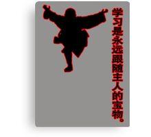 china kung fu Canvas Print