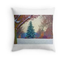 Stunning Fine Art Winter Scene (No.2) Throw Pillow