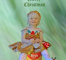 christmas card 2 by Sandra Caven